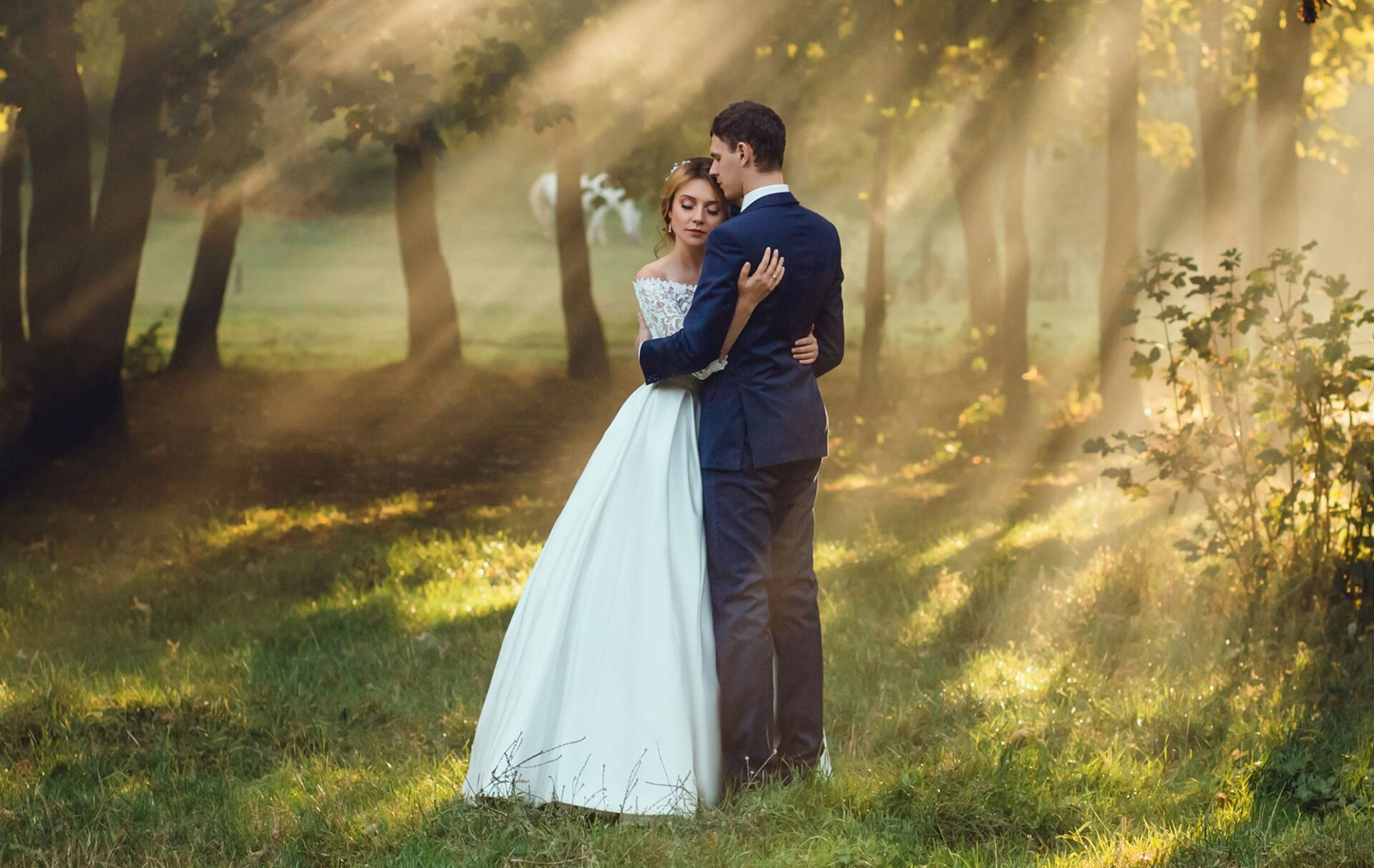 calm photo of a young bride in a beautiful long white a wedding magnificent dress and the groom to a strict fashionable stylish blue suit